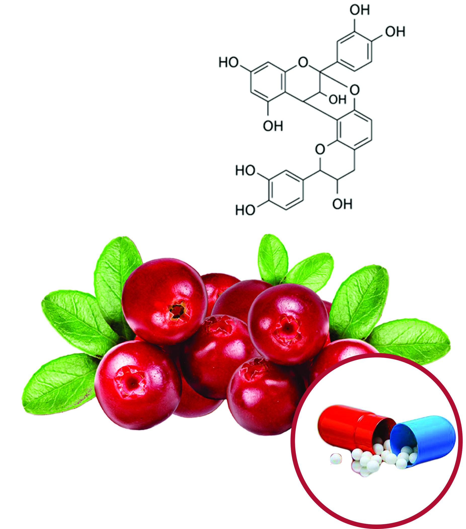Cranberry Beadlets
