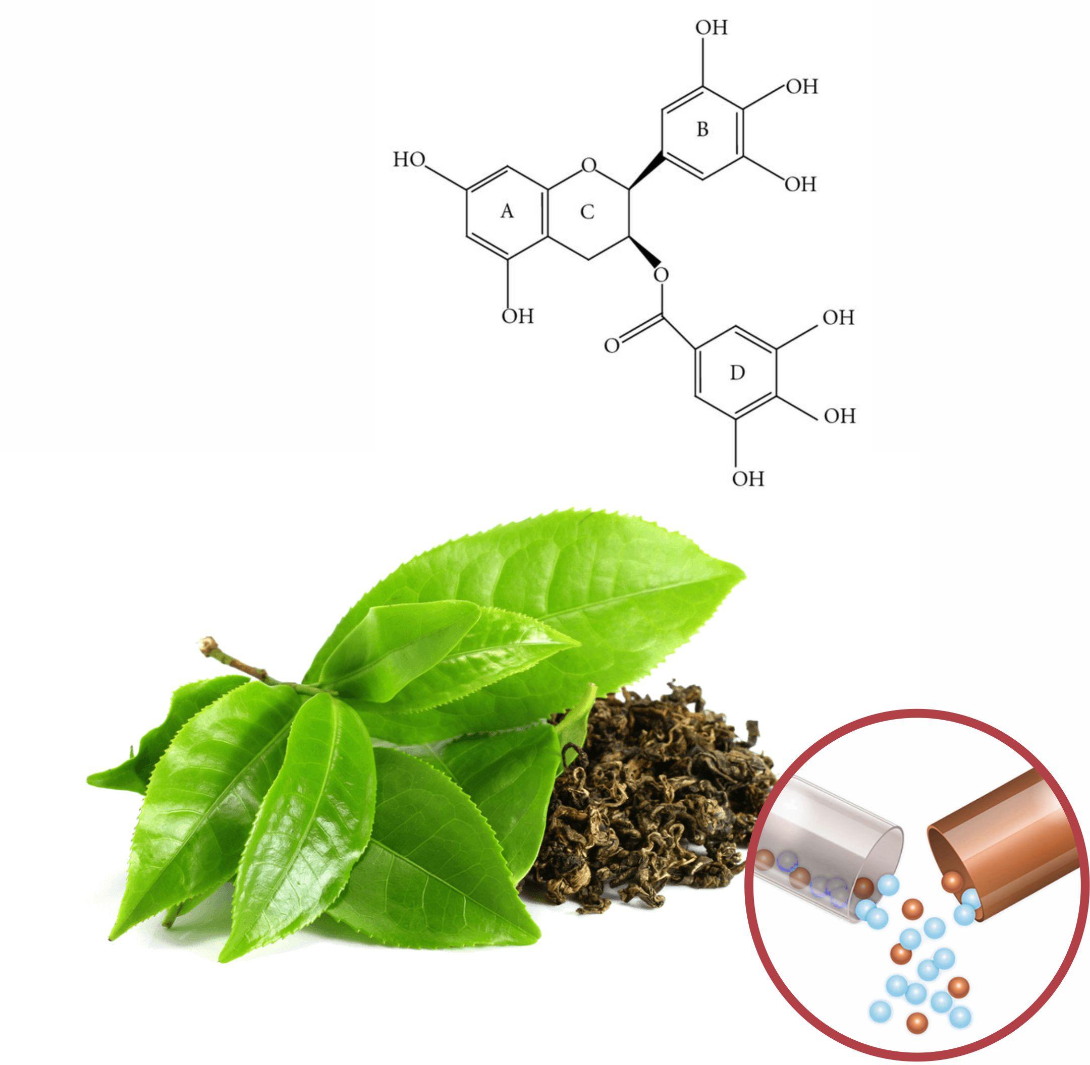 Green Tea Beadlets