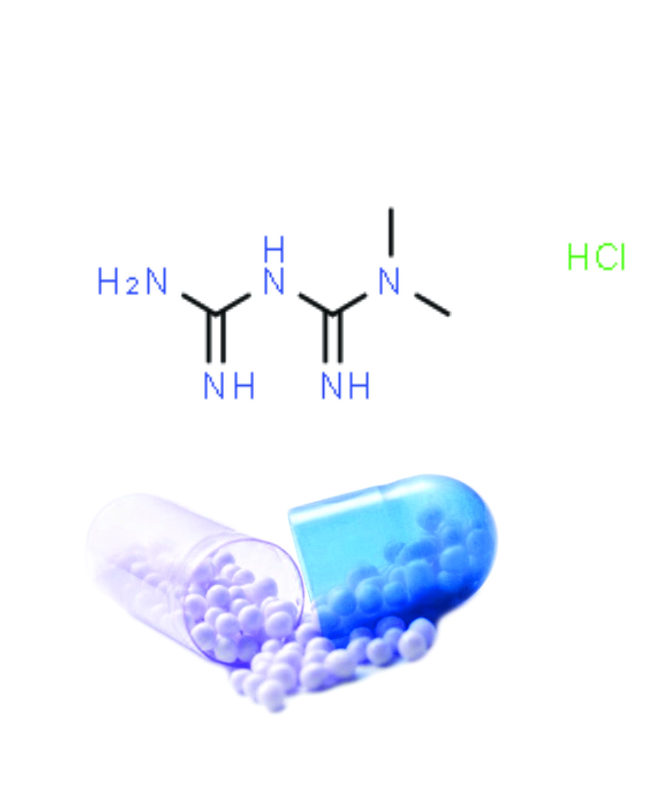 Metformin Hydrochloride SR Pellets