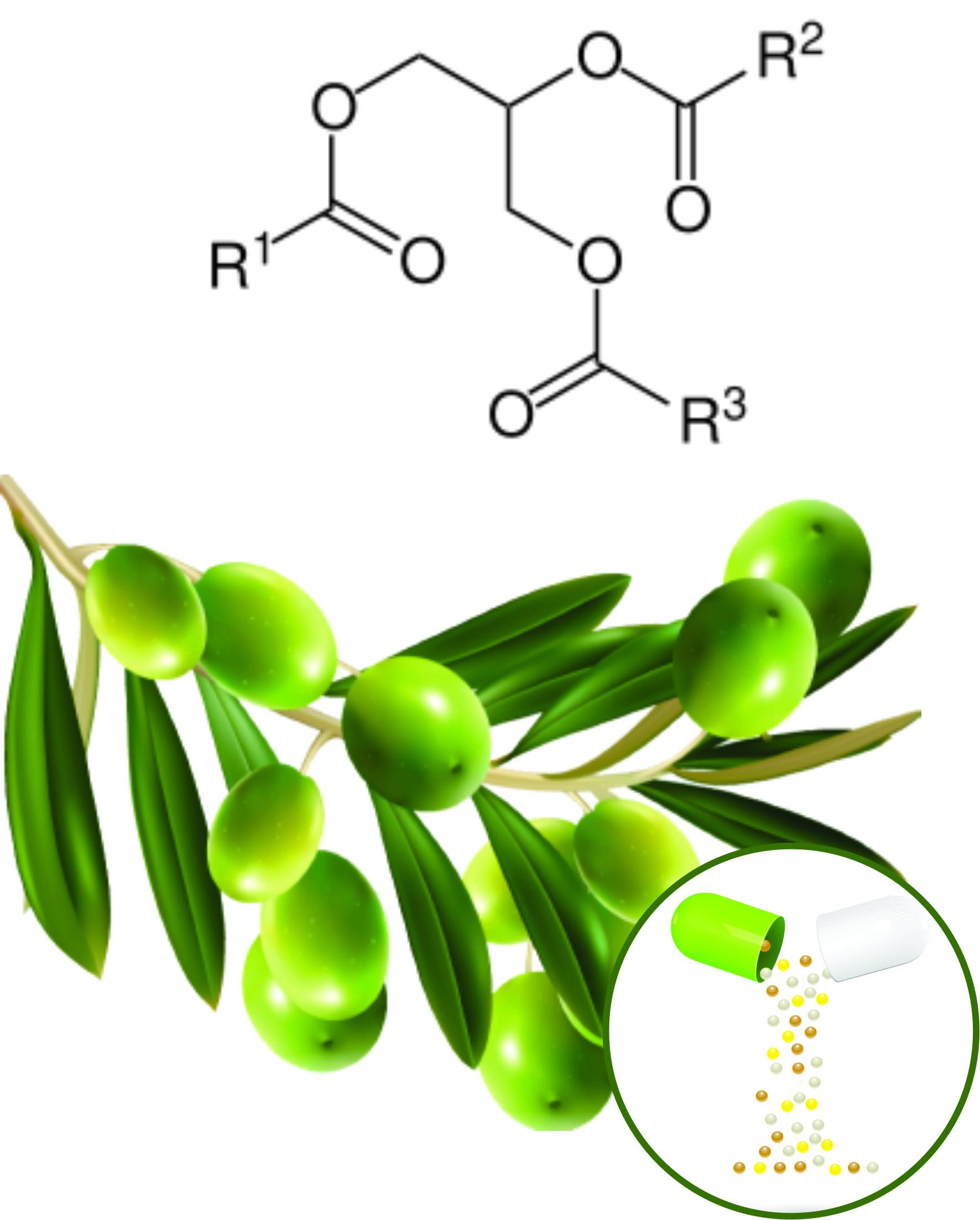 Olive Beadlets