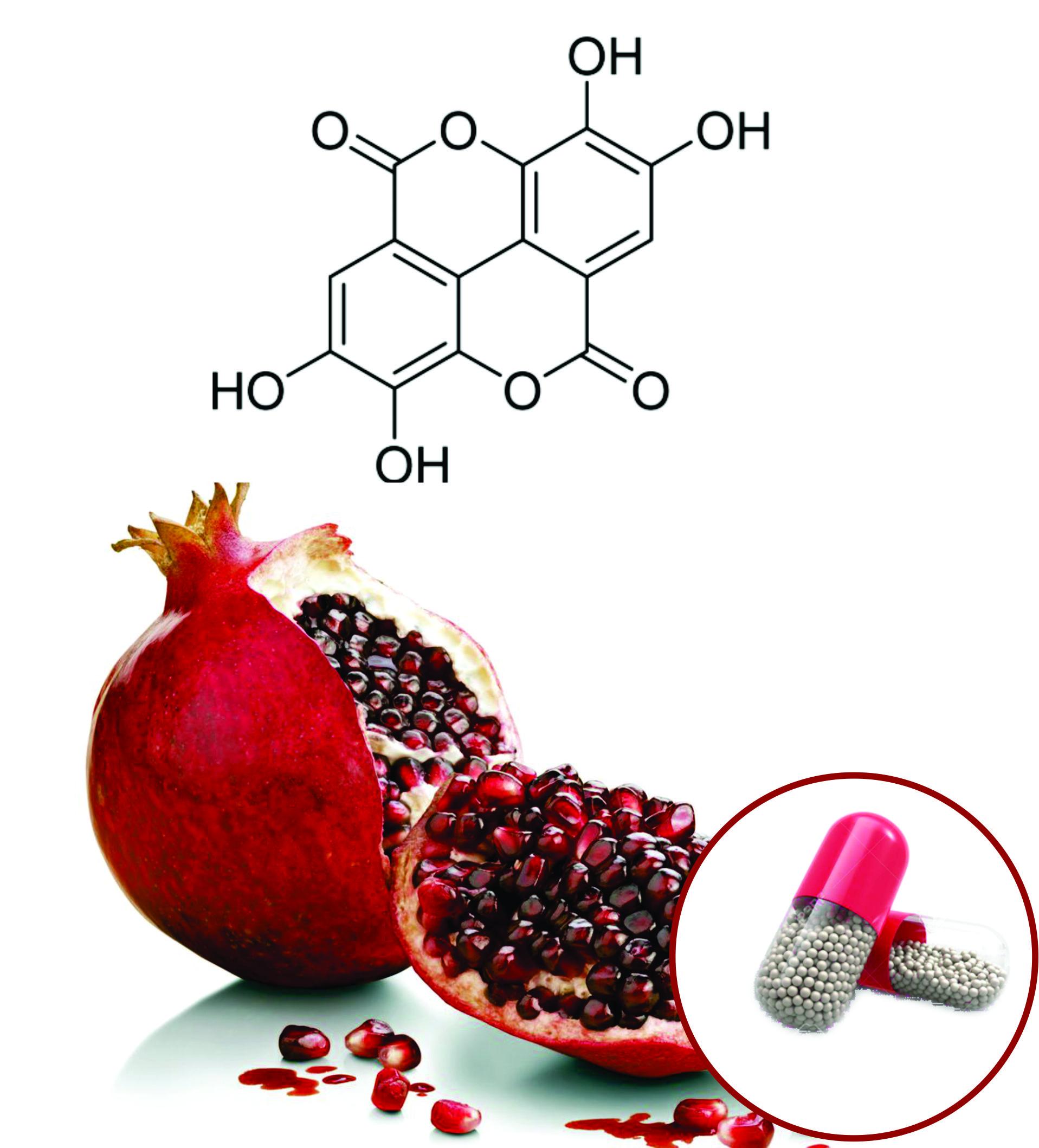 Pomegranate Beadlets